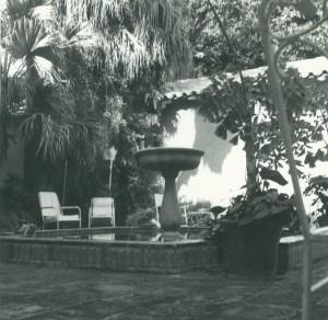 fountain Palm Beach House