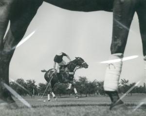 US Olympic Equestrian Trials - 12