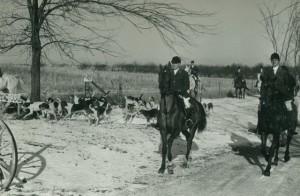 fox hunting - 8